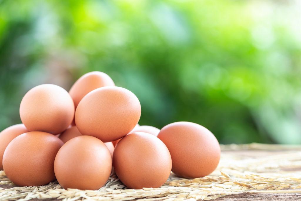 免疫力を高めるオススメ食べ物7選その①卵