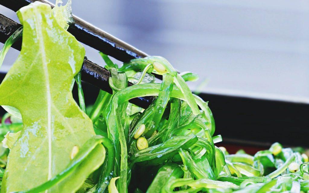 免疫力を高めるオススメ食べ物7選その⑥海藻